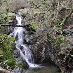Cascade Trail photo