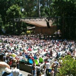 Stern Grove Festival photo